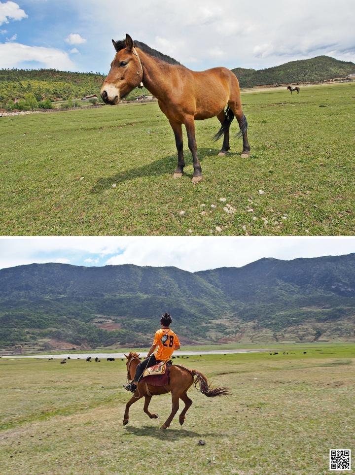 Lijiang 39